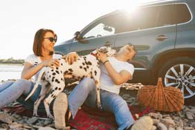 A couple sat on a picnic blanket playing with a dalmatian