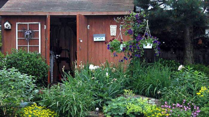 A pretty garden shed surrounded by luscious plants and hanging baskets