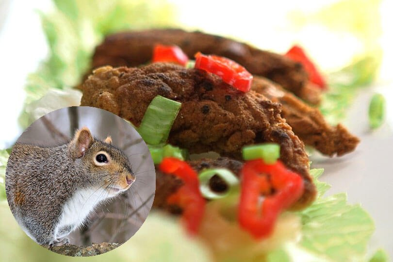 Southern-fried squirrel