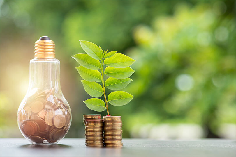 Upside-down light bulb filled with coins, and a pile of coins with a plant growing out of it/