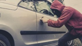 8 types of vehicle theft