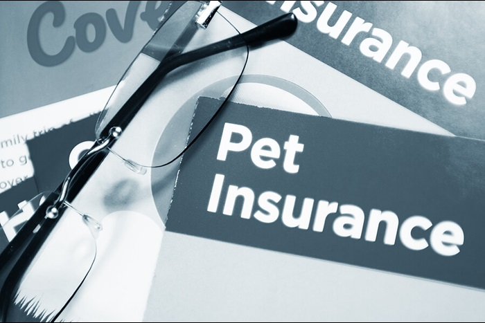 Documents detailing pet insurance policies